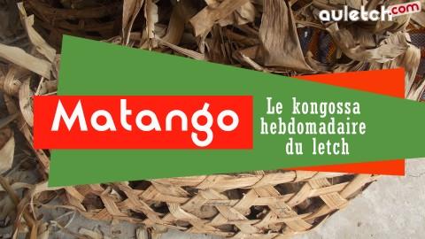 Matango N°12, le kongossa du letch
