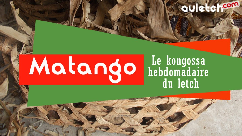 matango_article