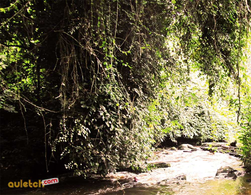 purification esob nyol chez les beti au cameroun