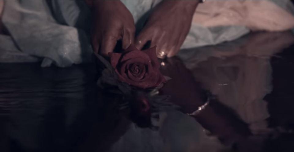 Aya - Rose
