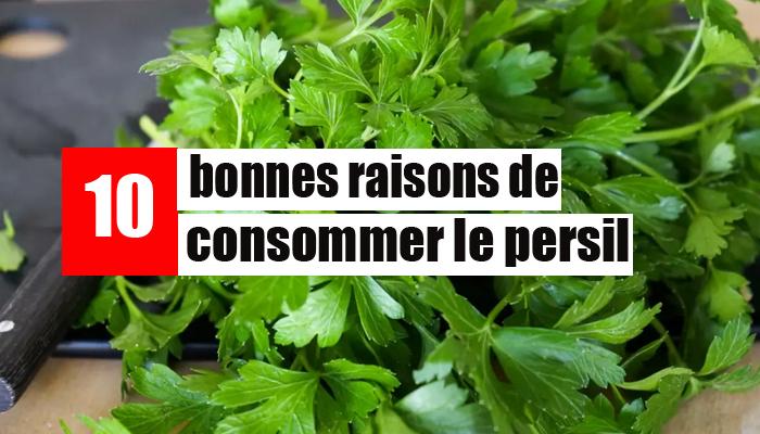 10-bonnes-raisons-de-consommer-le-persil