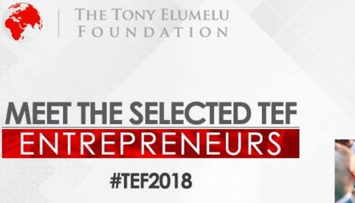 Tony Elumelu Foundation-Auletch